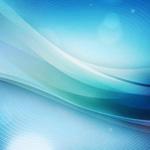 胡蝶蘭の病気の原因とその対策法